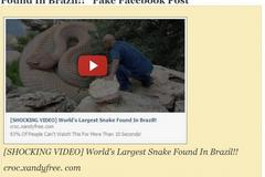 'World's Largest Snake Found In Brazil' Shocking Video a Facebook Scam